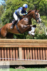 As expected, Sonja Johnson jumped clear around the Mitsubishi CCI4* track riding the eye catching stallion, 'Misty Isle Valentino'. Or so we thought, until it turned out that they crossed their tracks on course which constitutes a refusal, although Valentino jumped everything in front of him. They hold provisional fourth place heading in to the Mitsubishi CCI 4* jumping phase tomorrow.