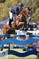 Courtney Fraser rode her Australian Stock Horse, 'Rockin It' by Talisman Fiddler to take eighth place in the Horseland CCi 2* competition.