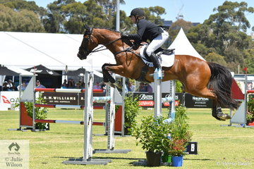 Victorian rider, Callum Buczak rode his, 'Matavia Cheval' by Champion FP to produce a good performace over three sections of the competition to take second place in the RM Williams CIC 3*.