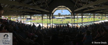 It was standing room only in the historic Victoria Park Grandstand. This is a view of the main arena from the back of the stand.