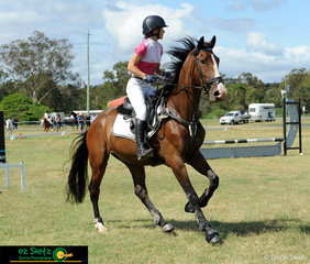 Karen Morgan and her young 4 year old Warmblood Kalimna Revelation competed in the first competition in the 60cm on Saturday morning at the Queensland State Equestrian Centre
