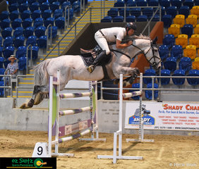 Just Dutch, Holly Penfold's 8 year old gelding was ridden by Jamie Raymont in the 1.35m Grand Prix at the Queensland Indoor Show Jumping Champioinships.