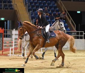 It was big pats for Courtlands Irishman (aka Biscuit) and all smiles from Nicky Willett as they exited the arena after completing their 1.35m Queensland Indoor Championship round