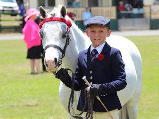 Champion Led Pony Arcadian Spirit shown by Sabastion Lucas