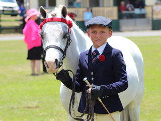 Champion Led Pony Arcadian Spirit shown by Sabastion Lucas