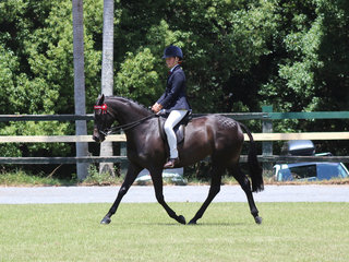 Taylah Humphries working out to win the ridden Riding Pony