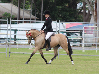 Champion Novice Pony Langtree Del Esprit ridden by Charlee Anthony