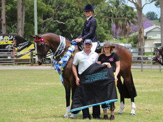 Northern Rivers OTT winner BP Obsession exhibited by Isabelle Ellis with sponsors from Northern Rivers Saddleworld