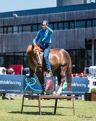 Brumby Challenge. Flinders Greentree riding VBA Brandy