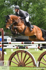 Local boy, Kane Chester jumped a good clear first  round in the Australian Quality Pet Foods Future Stars riding his promising young horse, 'Denison Park Corduroy'.