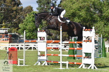Ally Lamb is pictured aboard  yet another talented Denison Park horse, this time , 'DP Style' that jumped an impressive first round clear in the  Australian Quality Pet Foods Future Stars  class.