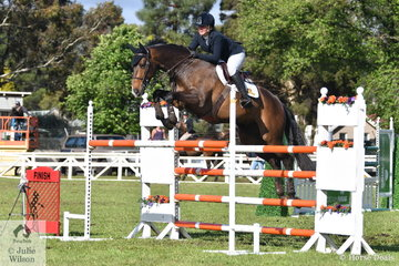 Samantha Morrison jumped clear and four to take tenth place in the Australian Quality Pet Foods Future Stars  riding her, 'Corfu'.