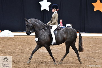 Successful young NSW rider, Elizabeth Taylor rode the Duncan and Treneman Families' well performed and another Victorian bred Show Hunter Pony, 'Owendale Rembrandt' to take out the Child's Large Show Hunter Pony Championship.