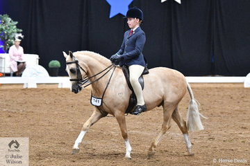 Representing Queensland, Jack Jackson rode Carmen Jackson's charming, 'Elvonara Park Kandyman' to take third place in the Child's Large Show Hunter Pony Championship.