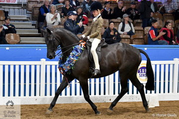 Elizabeth Taylor rode her brother, Hunter's, 'EBL One Night In Paris' to take out the Child's Large Show Hunter Galloway Championship for NSW.