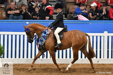 Riding for Queensland, Chase Jackson was making quite an impression on day one of the Ego Sun Sense 2018 Australasian Show Horse and Rider Championships. He rode his, 'Mirinda Princess Perfect' to take out the Child's Small Pony Championship.