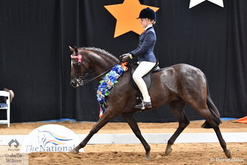 Representing Queensland, Ada Spring rode Georgia Fairweather's well performed, 'Gordon Park Supanova' to claim the Child's Small Galloway Championship.