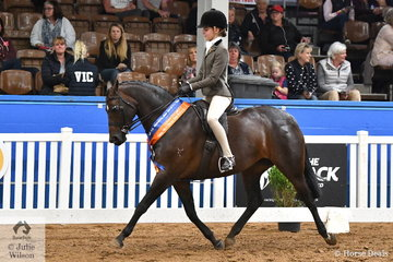 Kate Kyros is certainly doing her best for South Australia. She is pictured aboard her, 'Kolbeach Holly's Diamond' that was declared Runner Up Large Show Hunter Pony.