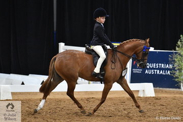 Fast making a name for himself as a talented young show rider, Chase Jackson rode Carmen Jackson's, Victorian bred, 'Mirinda Princess Perfect' to claim the National Small Pony Runner Up award for Queensland.