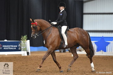 Ava Halloran has made a successful transition form ponies to horses and big ones at that. Representing Victoria Ava claimed the 2018 Rider 15-17 Years Championship.