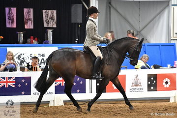 Riding for Queensland, Adam Oliver rode Emma Ashton's, 'Cruze' to take out the 2018 Large Show Hunter Galloway Runner Up award.