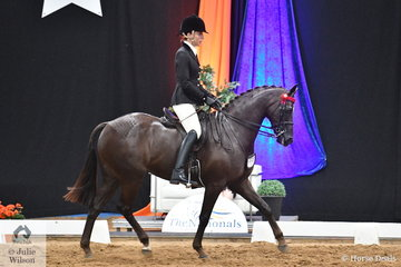 Sarah Ryan's beautiful, 'Holly's Galaxy' today claimed a hat trick of National Large Galloway Championships. The gelding by Fernleigh Fine Print took out the title in 2013, 2017 and again today.