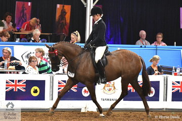 Riding for Queensland, Melissa Sambrooks claimed third place in the 2018 Large Galloway Championship riding her, 'Carlingford Park Double Take'.