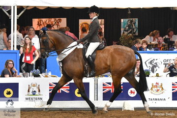 Representing NSW, Jess Stones rode Matilda Longbottom's, 'Power Play' By Regal Poetry In Motion to take third place in the National Large Show Hunter Hack Championship.