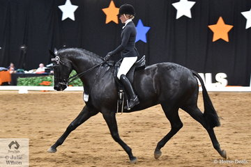 Riding for NSW, Jess Stones and her , 'Taittinger' produced the workout of the class to take out the Ego Sunsense 2018 National Large Hack Championship. Jess and the besutifully educated black horse won this title in 2016.