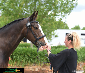Presenting at the 2018 Wallaby Hill Three Day Event CCN 105 trot up was Kristen Lenne and her horse Highview Park Reload.