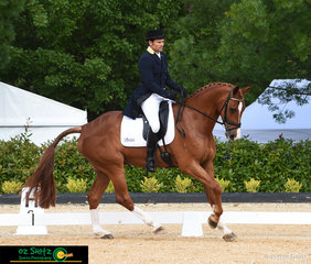 Current Australian representative, Shane Rose competes Finch Farm Spruce (Calgary GNZ x Adloo Annabelle) in the CCI Two Star at the Wallaby Hill Three Day Event.