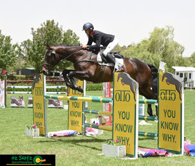 Jumping over the OTTO fence in the CCI Two Star show jumping phase was Carlene Barton and APH Witchcraft on the final day of the 2018 Wallaby Hill Three Day Event.