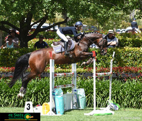 On the last day of the Wallaby Hill Three Day Event, Annabel Armsrong rides her 13yr old mare, Forgetmenot in the final phase of the eventing.