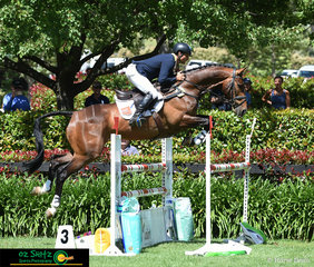 The crowds eyes were locked onto Shane Rose and Ultimate Velocity as they made their way around the show jumping track in the CCI Three Star resulting in Shane taking the win of the class.