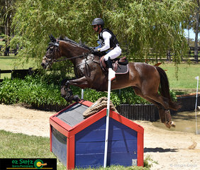 All the way from Brisbane, James Ferrier and Sidestep cruise over the CCI Two Star cross country course at the International Three Day Event held at Wallaby Hill Farm.