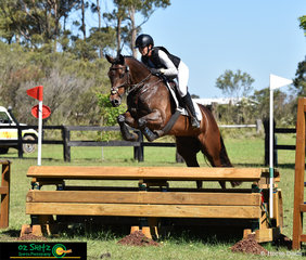 Lesley Brodbeck and Lexington Furstin Affair clear the final EvA95 fence with ease at the Wallaby Hill International Three Day Event.