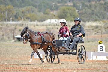 2018 Goyder Plains Carriage Driving Association Dressage Event
