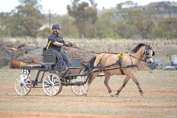 Ree Tyas driving 'Burnburra Lycra'