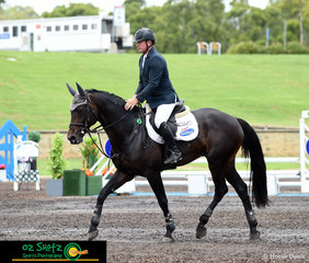 It was a great round for Fontaine Blue VDL with Paul Brent in the saddle, competing in the 1.40m on the second day of the Summer Show Jumping Classic held at the Sydney International Equestrian Centre.