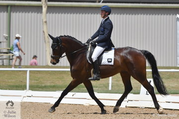 Jackson Stern took 6th place riding Templeton Fursteniro in the 6 yr old Young Horse Class.
