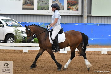 Brodie Harrison rode Kings Town Harrison to sixth place in the Pony Preliminary 1.3.