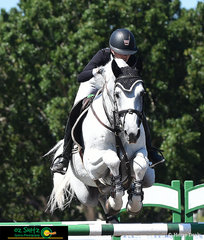 Flying high in the Equestrian NSW 1.50m class was Katie Laurie and Casebrooke Lomond in preparation for their World Cup start on Saturday's program at the Summer Show Jumping Classic.