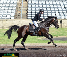 Aaron Hadlow and Twins Easton VDL waste no time to get to the final fence leaving the arena with no penalties with a very fast time of 61.22 leaving them in third place.