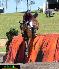 Kate Hinschen and Finch Farm Cadel take a leap over Ayers Rock in the World Cup Qualifier jump off at the Summer Show Jumping Classic held in Sydney.