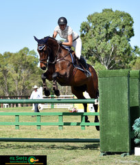 Competing throughout the NSW Amateur Series at the Sydney Summer Show Jumping Classic is Melanie Heygate riding her thirteen year old Thoroughred Pacific Odyssey.
