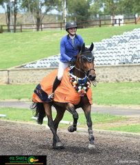 With only two double clear rounds, Madison Stephen and and Galliuano MS rode a blistering fast time of 41.2 to steal the win from Chris Chugg in the Mini Prix Final held in the Main Arena on Sunday at the Sydney Summer Show Jumping Classic.