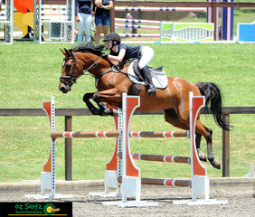 Competing in the Open 1.10m on the final day of the Sydney Summer Show Jumping Classic was Tylah Studdert and her eight year old Warmblood mare Noonamah Valentina by the well-known stallion Vivant.