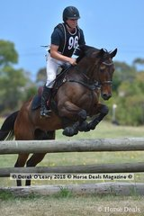 "Callum Buczak in the Open Grade 1 riding ""Caruso Iron Spider"""