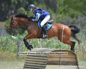 """Phoebe Dixon in the Open Grade 1 riding """"Zompare"""" placing 8th with a final score of 141"""