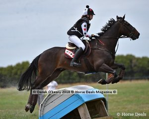 """Courtney Thompson in the Open Grade 2 riding """"Louie"""" placed 6th with a final score of 82"""